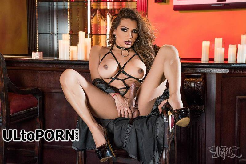 TransAngels.com: Jessy Dubai - Jessy Dubai From Lace to Leather [267 MB / HD / 720p] (Shemale)