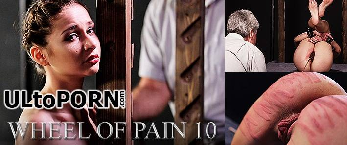 Elite pain of pain wheel Elite Pain